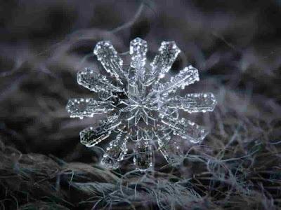 شوف شكل ذرات الثلج تحت المجهر   بالصور