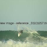 _DSC0257.thumb.jpg