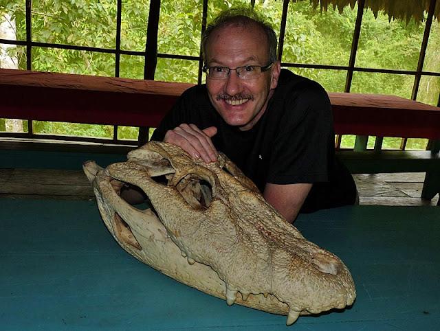 Questões e Fatos sobre Crocodilianos gigantes: Transferência de debate da comunidade Conflitos Selvagens.  - Página 3 P1070104a%25C3%25A7%25C3%25BA