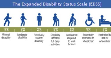 My Ms Stories The Expanded Disability Status Scale Edss