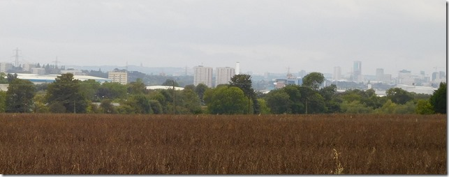 8 brum across the fields