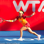 Jie Zheng - Prudential Hong Kong Tennis Open 2014 - DSC_4525.jpg