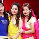 Multi Cultural Festival in YTM 2013