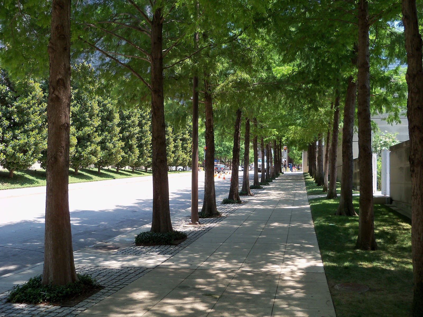 Dallas Fort Worth vacation - 100_9705.JPG