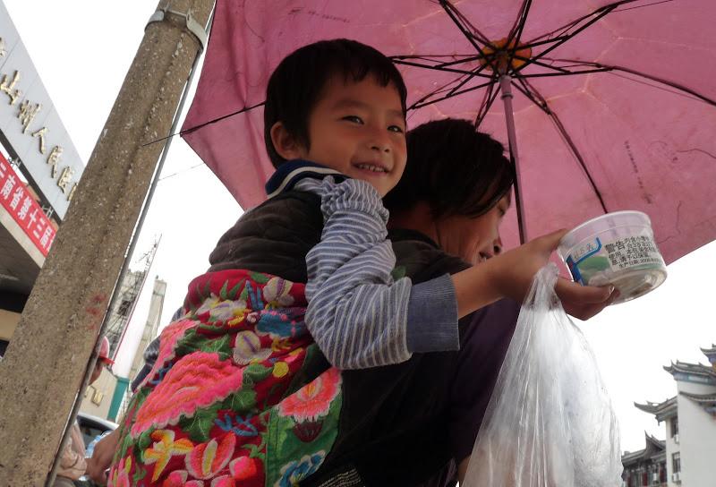 Chine.Yunnan Wen shan et BA MEI 1 - P1260831.JPG