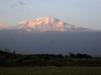 Kilimanjaro - the trek begins