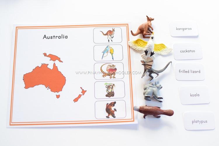 Australia Continent Activity Sheet