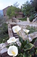 La Canonica_San Casciano in Val di Pesa_21