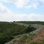 tn_portugal2010_433.jpg