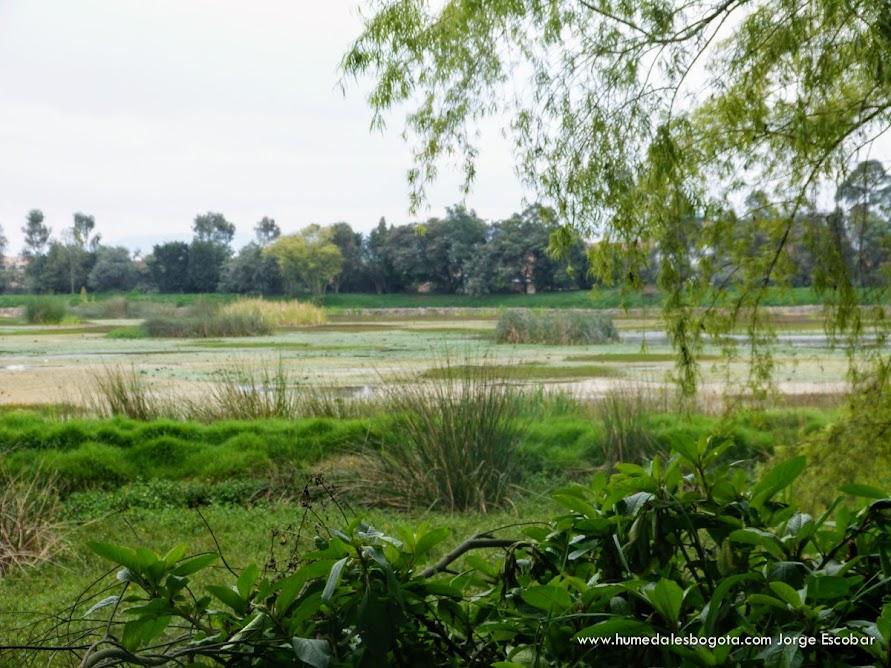 Recorrido Humedal Meandro del Say