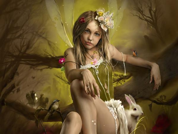 Fairy Of Forest Life, Fairies Girls 2