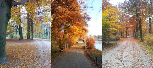 Herbst im Park.
