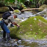 Rio Los Cedros, 1300 m. Montagnes de Toisan, Cordillère de La Plata (Imbabura, Équateur), 20 novembre 2013. Photo : J.-M. Gayman