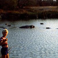 84 africa hippos JJ.jpg