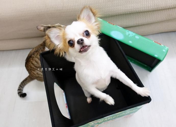 2 isufu舒福家居 寵物窩 收納椅凳