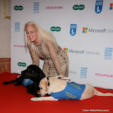 WWW.ENTSIMAGES.COM -       Debbie Douglas  at       Guide Dog of the Year Awards at London Hilton Park Lane London December 10th 2014Annual awards which celebrate the partnership between guide dogs and their owners.                                              Photo Mobis Photos/OIC 0203 174 1069