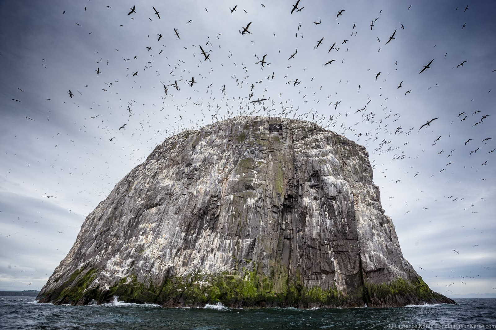 [Scottish+seabird+center+boat+ride_by_Laurence+Norah-6%5B4%5D]