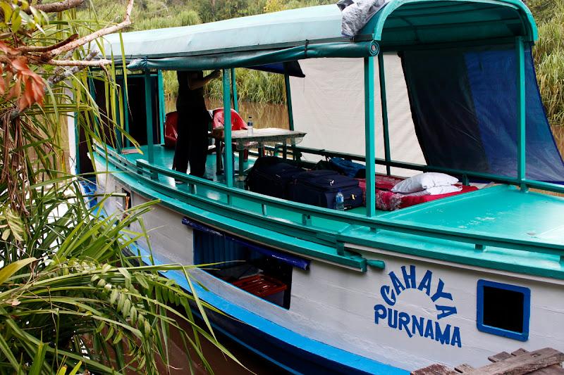 Nuestro alojamiento en la jungla de Borneo, un klotok