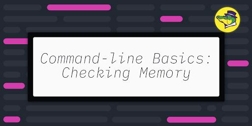 Command-line Basics: Checking Memory
