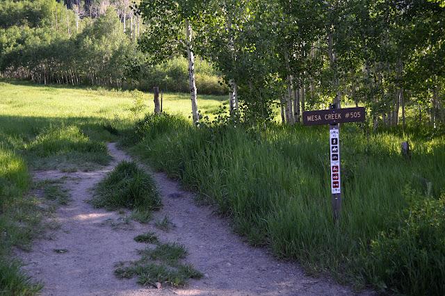 trail #505