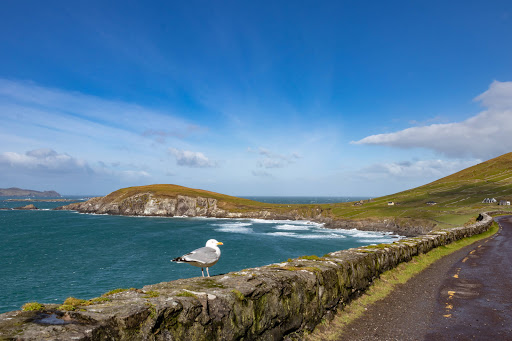 Ultimate guide to the Wild Atlantic Way road trip in Ireland