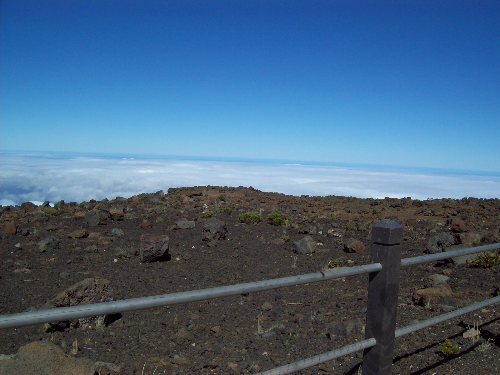 Hawaii Day 8 - 100_8141.JPG