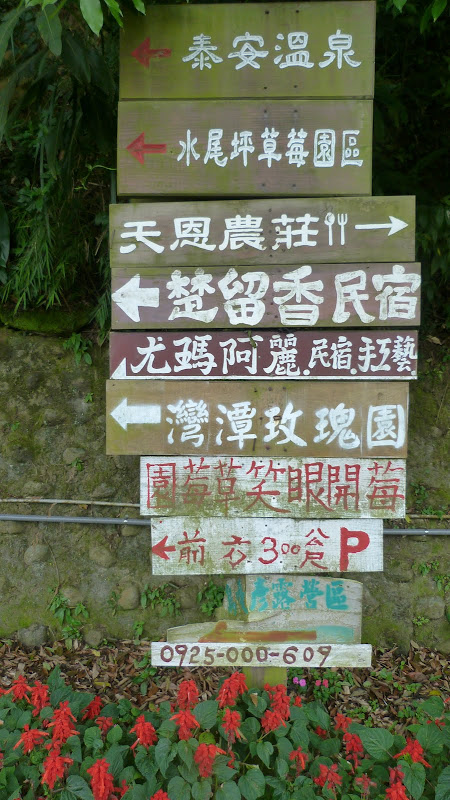 TAIWAN  Miaoli county,proche de Taufen - P1130183.JPG
