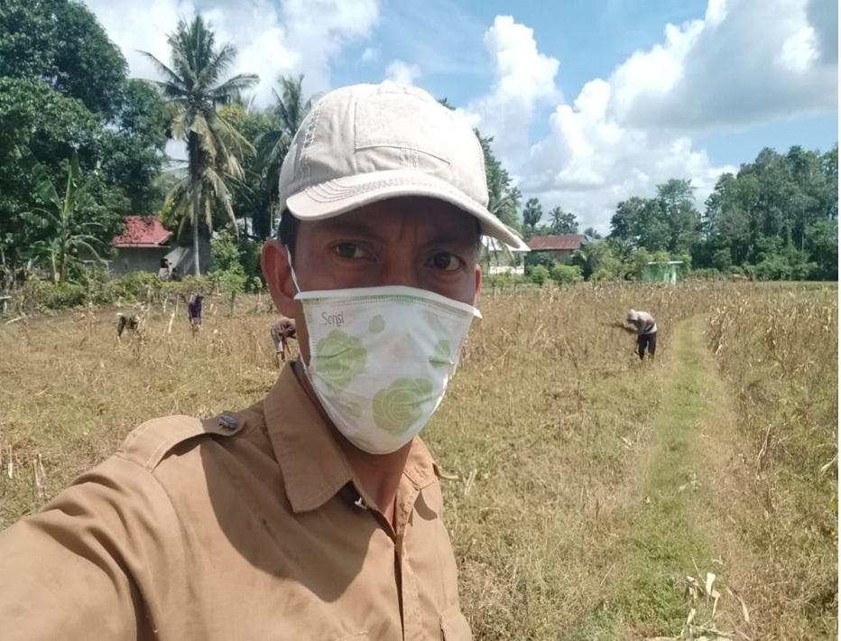 PPL Hasanuddin : Panen Kedelai Varietas Argomulyo di Kab.Bone Untuk Memenuhi Ketersediaan Pangan Tradisional Dagri