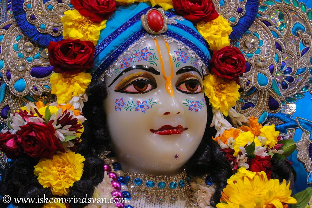 ISKCON Vrindavan Deity Darshan 10 Jan 2017 (14)