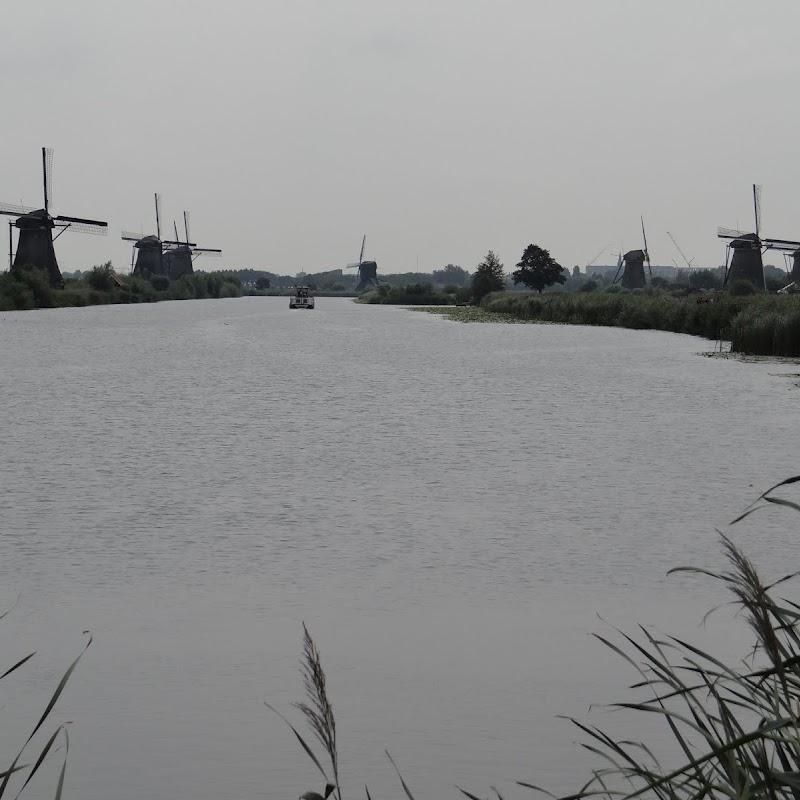 Day_6_Kinderdijk_50.JPG