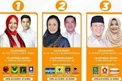 Ini Hasil Sementara Survei Pilkada Karawang 2020, Siapa Juaranya Simak Isi Beritanya