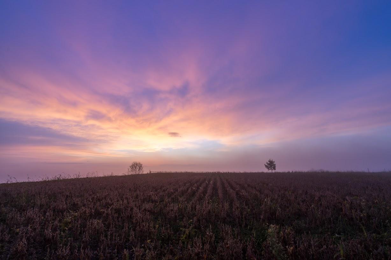 オーロラのような朝の光