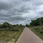 20180624_Netherlands_Olia_145.jpg