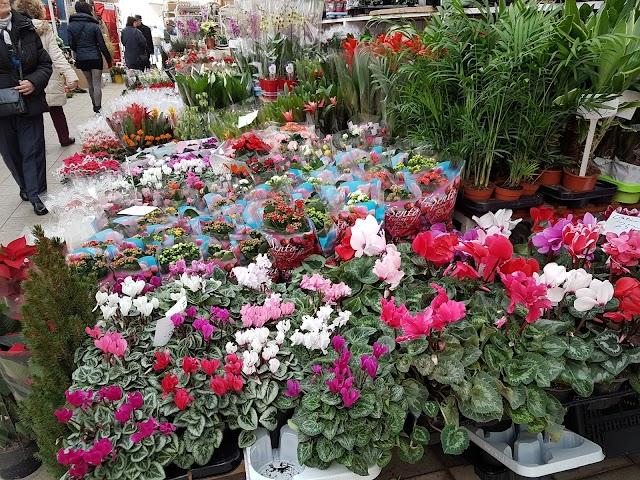 BudapEsti Virágpiac