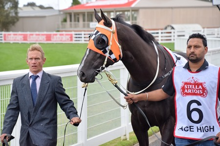 caulfield cup_ace high 2