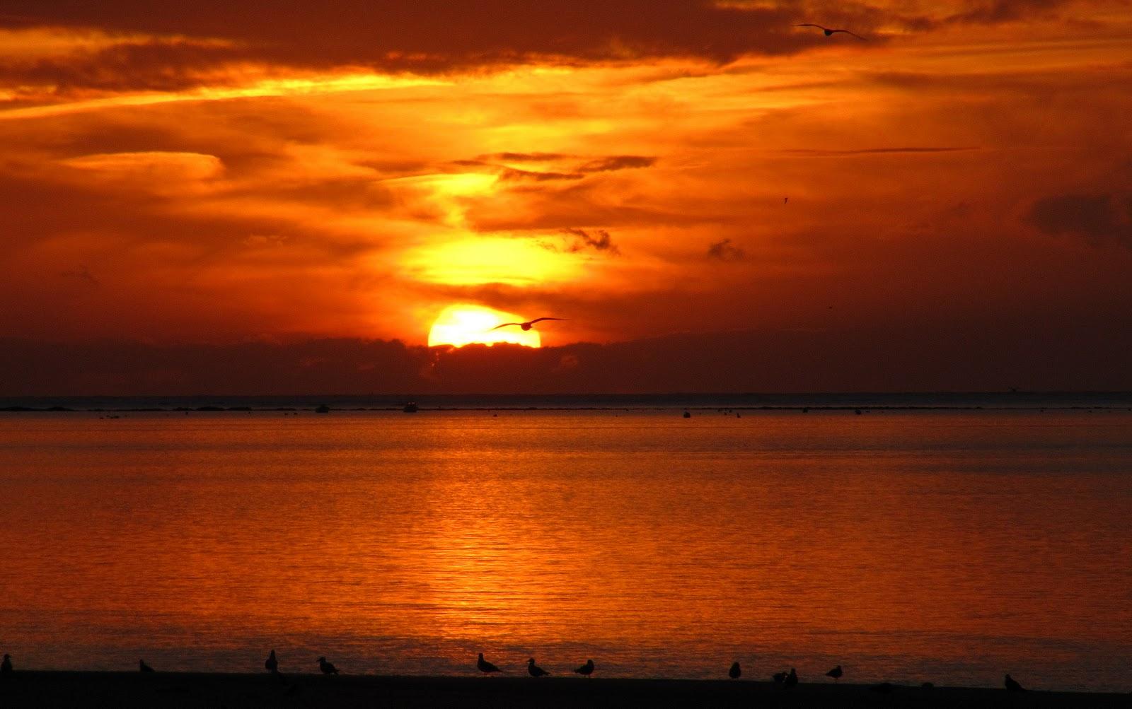 Atardecer puesta de sol ocaso fotos de orel for Puesta de sol