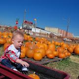 Pumpkin Patch - 115_8259.JPG