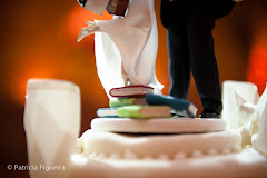 Foto 0613. Marcadores: 18/06/2011, Casamento Sunny e Richard, Gino Prince, Noivinhos, Rio de Janeiro