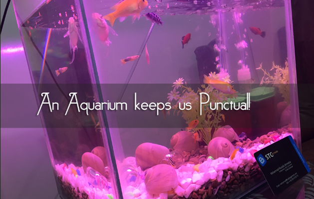 Fish aquarium keeps one punctual in office