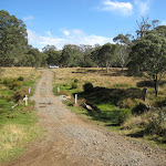 Looking up road to Little Murray camping area