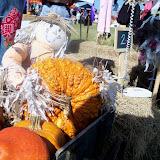 Scarecrow Festival - 100_0763.JPG