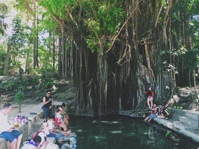 Balete Tree Siquijor
