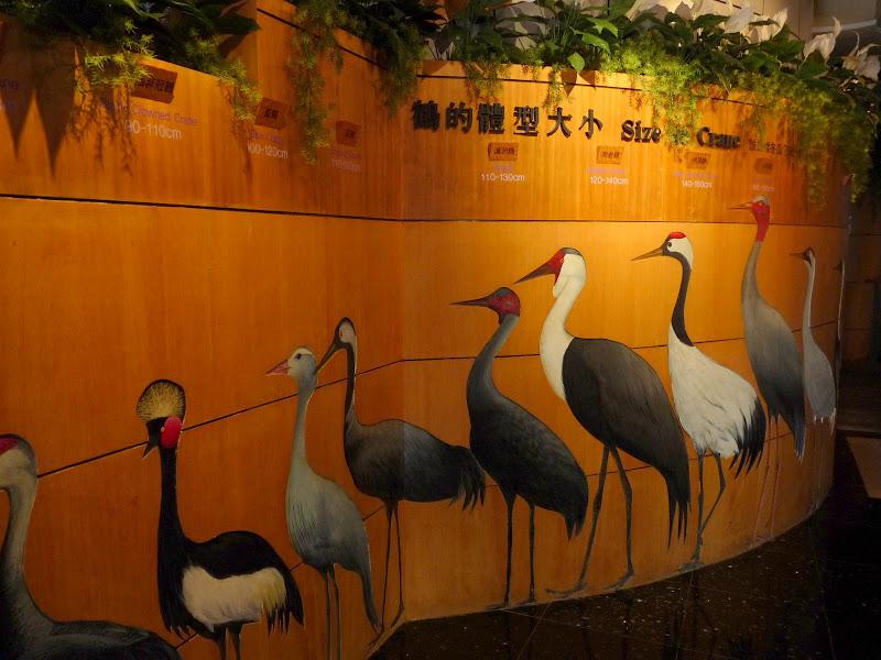 TAIWAN.Dans la région de Nantou, au centre de Taiwan - P1100276.JPG