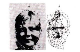 запись движения глаз при рассматривании лица
