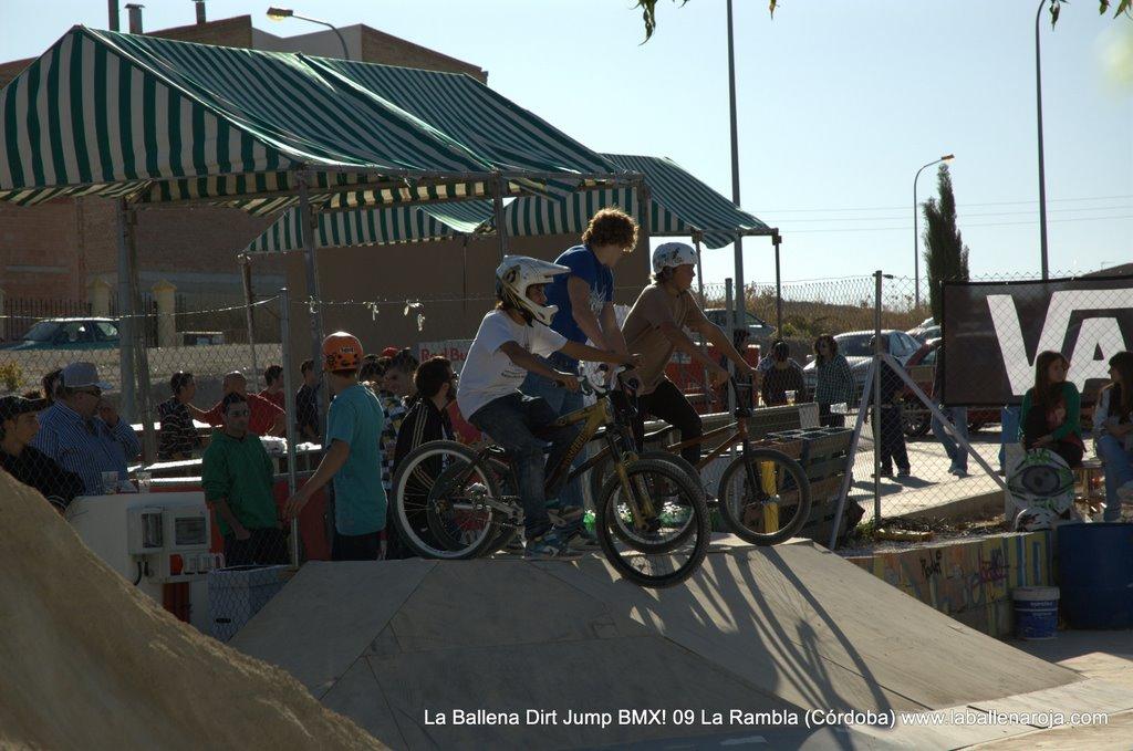Ballena Dirt Jump BMX 2009 - BMX_09_0085.jpg