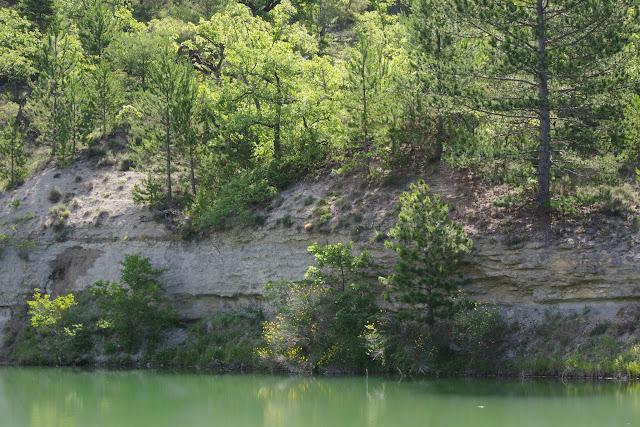 L'étang. Les Hautes-Courennes (440 m), Saint-Martin-de-Castillon (Vaucluse), 22 juin 2015. Photo : J.-M. Gayman