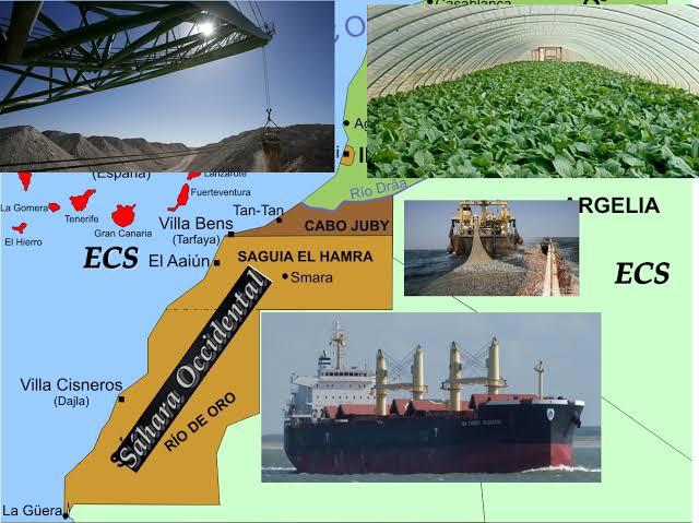 REPORTAJE | Empresas que expolian los recursos naturales del Sáhara Occidental ocupado por Marruecos. El sostén de la ocupación.