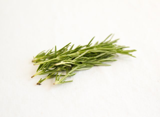 photo of sprigs of fresh rosemary