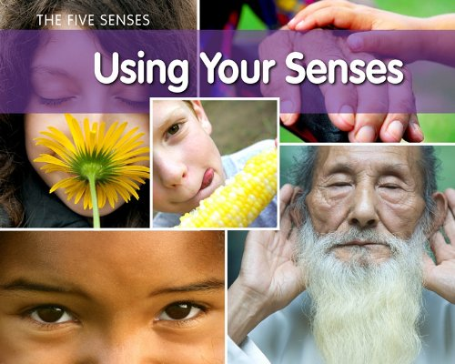 The Five Senses Using Your Senses