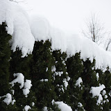 Škofja Loka under the snow - Vika-9050.jpg